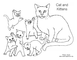 Cat And Kitten Coloring Pages cat and kittens coloring page