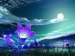 moon flowers purple moon flowers by cuteblack911 on deviantart