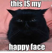 Grumpy Cat Meme Happy - cataddictsanony mouse this my happy face wwwfacebookcomcataddicts
