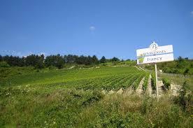 Conservation Vin Rouge Irancy Aoc U2014 Wikipédia