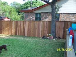 the fence made around the oak tree that was in the middle of the