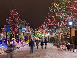 when do the zoo lights start zoolights things to do in chicago