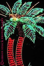 palm tree neon light palm trees las vegas nv photography by mark gibson neon signs