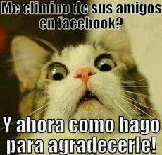 Memes Funny En Espaã Ol - 19 best espa祓ol images on pinterest cards and jokes