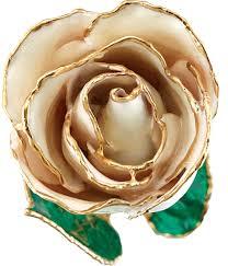 gold roses karat gold roses