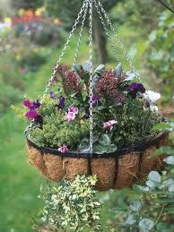 how to plant bulbs in hanging baskets hgtv