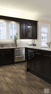 kitchen ideas with black cabinets moon white granite slab home kitchens kitchen remodel