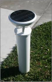 Solar Turtle Light by More Street Lighting Products Green City Solar