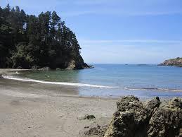 ocean views artist retreat stroll to beach 2min to mendo walk to