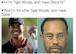 Eye Of The Tiger Meme - tiger woods mugshot gets the meme treatment daily mail online