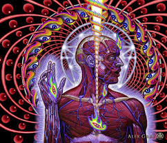 Home Decor Wall Posters Poster 28x24 16x13 Trippy Alex Grey Wall Poster Print Home Decor