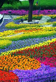 flower garden ideas for your edible landscape perennial garden