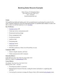 Hybrid Resume Samples by Sales Resume Indian Format