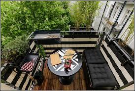 ameisen auf dem balkon ameisen auf dem balkon