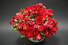 Alstroemeria Red Roses Tulips U0026 Alstroemeria In Pasadena Ca Jacob Maarse