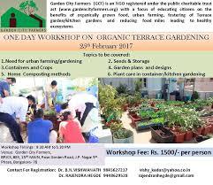 Benefits Of Urban Gardening - one day workshop on organic terrace gardening