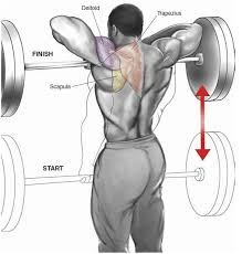 Bench Press Shoulder Impingement The 9 Best Shoulder Exercises Of All Time Page 2 Of 3 Fitness