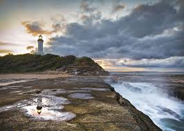 20 Great Dog Walks Around Sydney And Central Coast Australian Top 10 Family U0026 Dog Friendly Things To Do In Long Jetty The