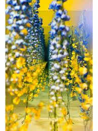 Sarah Meyohas U0027 Floral Tunnels