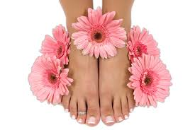 anns nails and spa manicures pedicures nail extensions