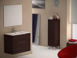Modern Bathroom Vanity Sink by Eviva Galsaky 28