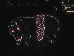 annmarie garden in lights 8 spots in maryland with the quirkiest christmas decor