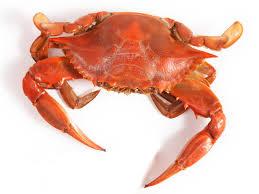 halloween crab soft shell crab sandwich food network