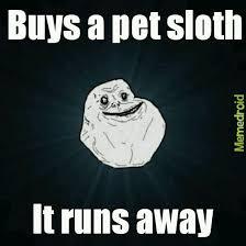 I Like Turtles Meme - i like turtles meme by food memedroid