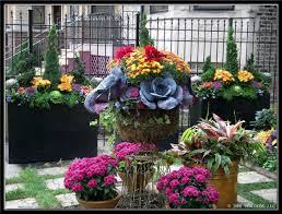 tu bloom garden landscape design services residential