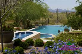 desert landscaping ideas creative environments blog