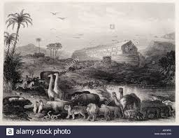 noah ark entry into old testament bible pair two by flood deluge