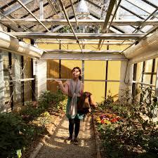 jade garden u2013 berlina