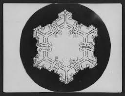 snowflake bentley museum the innovative photos that proved no two snowflakes are alike