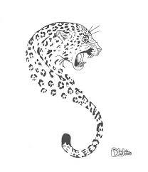 tiger sketch sketches by dee waters drawings u0026 illustration
