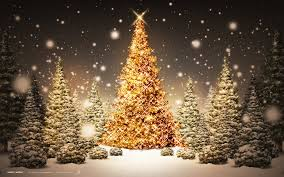 cool christmas cool christmas tree wallpaper hd wallpaper desktop
