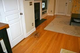 mold growing on hardwood floors flooring diy chatroom home