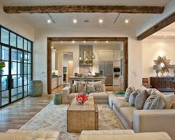 Transitional Interior Design Ideas by Living Room Transitional Pleasing Transitional Living Room Design