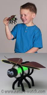 insect craft projects u0026 activities for teaching kids about insects