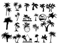 great sketch of palm trees beach illustrations and photography