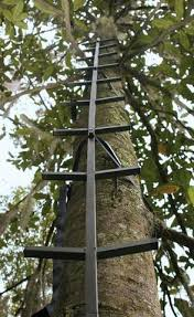 ol tree stands and outdoors huntertreestands