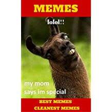 Buy All The Books Meme - com grandma loves hip hop kindle store