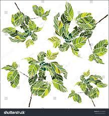 set vector coffee trees green gamma stock vector 212316049