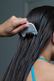 pretty pubic hair defined can you get pubic lice from head lice things you didn t know