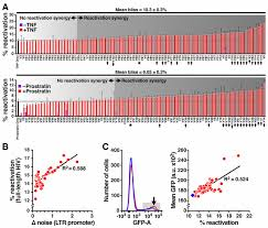 screening for noise in gene expression identifies drug synergies