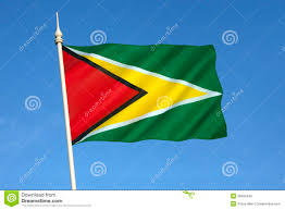 Guyana Flag Flag Of Guyana South America Stock Photo Image Of Country