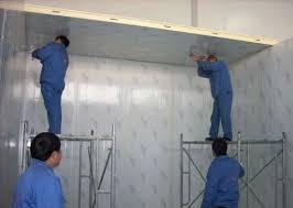panneaux de chambre froide épaisseur 100mm pu insulaion chambre froide pour les poissons