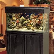 Home Aquarium by America Aquaria Custom Aquariums