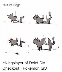 Cat And Dog Memes - 25 best memes about cat vs dogs cat vs dogs memes