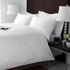 dry cleaning and bed bugs white way