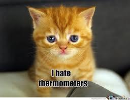 Sad Cat Memes - sad cat by arzaan789 meme center